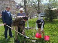 Аллею стобалльников заложили в Республике Алтай